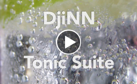 DjiNN and Tonic Suite: Open-source tools for deep learning as a service
